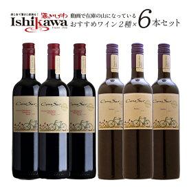 【送料無料】動画で在庫の山になっているワイン2種6本セット