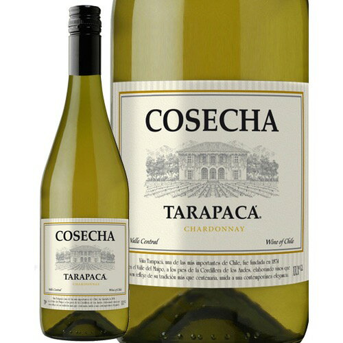 【あす楽】 コセチャ タラパカ シャルドネ 750ml 白ワイン チリ [N]