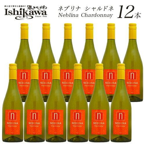 ネブリナ シャルドネ 12本 ワインセット 白 辛口 750ml 【あす楽】 【送料無料】 [N]