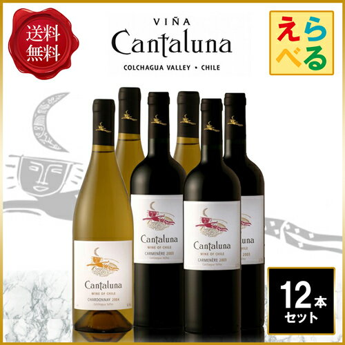 【送料無料】【選べる】 よりどりカンタルナ ワイン 12本セット 750ml×12本 ワイン チリ