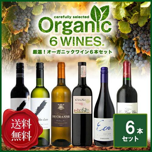 【送料無料】 厳選!コスパ抜群!オーガニック ワイン6本セット