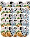 【あす楽】 駒越食品 KGS まぐろ 中トロ(中とろ)缶詰 80g 1ケース(24個)