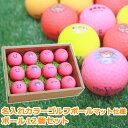 カラーゴルフボール ゴルフ ボール  マット 仕様 名 入れ12個セット 【あす楽】【贈り物】【ギフト】【プレゼント】ホールインワン …
