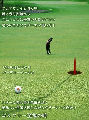 ゴルファー至福の時