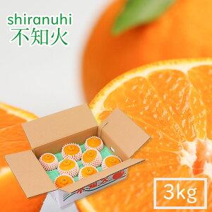 【最高級贈答用】不知火 (通称デコポン) 3kgセット 8個入り 熊本県天草産 大切な人への贈り物に最適