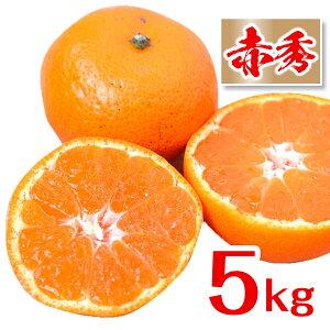 [送料無料][あす楽]みかん 和歌山県産 赤秀 和歌山ミカン 産地直送 フルーツマイスターが選別( 5kg )