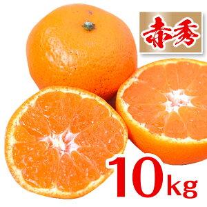 [送料無料][あす楽]みかん 和歌山県産 赤秀 和歌山ミカン 産地直送 フルーツマイスターが選別( 10kg )