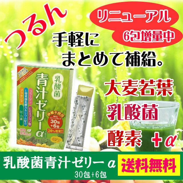 乳酸菌植物酵素入り青汁ゼリーα【送料込】