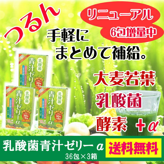 【3個セット】リニューアル乳酸菌植物酵素入り青汁ゼリーα乳酸菌、プラセンタ、コラーゲン青汁ゼリー(砂糖不使用カロリーカット)【送料込】