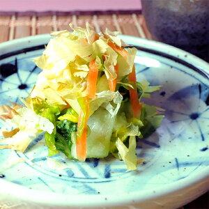 白菜うま味漬|新鮮で上品なあっさり風味 秘伝のうま味だし漬け お取り寄せ 漬物 漬け物 浅漬け