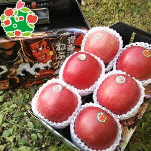りんご サンふじ 特選 大玉 手提げ箱 化粧箱 青森県産 ギフト 贈答用 6玉 送料無料