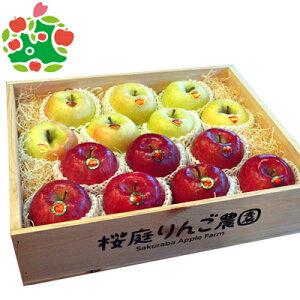 りんご サンふじ 王林 特選大玉 ギフト木箱 青森県産 ギフト 贈答用 5kg 送料無料