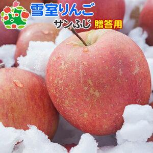 雪室りんごサンふじ特選中玉10キロ