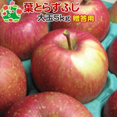 葉とらずりんご サンふじ 青森 贈答 葉取らずふじ 詰め合わせ可能【11月下旬収穫】葉とらずふじ特選大玉5kg