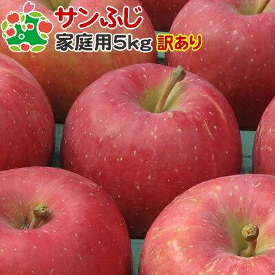 サンふじ 訳あり 5kg 青森 りんご サンフジ 訳あり リンゴ林檎 青森 詰め合わせ可能【11月中旬収穫】サンふじ家庭用キズあり5kg