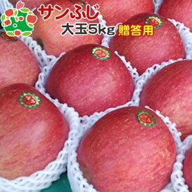 【12月上旬順次出荷】 りんご サンふじ 特選 大玉 青森県産 ギフト 贈答用 5kg
