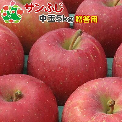 りんご サンふじ 特選中玉 青森県産 ギフト 贈答用 5kg 【CA貯蔵】