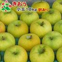 【訳あり】 りんご きおう 家庭用 小玉 キズあり 青森県産 10kg 送料込