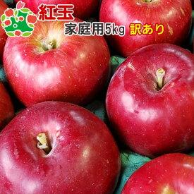 【訳あり】 りんご 紅玉 家庭用 キズあり 青森県産 5kg 送料込