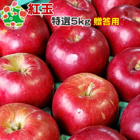 りんご 紅玉 特選 青森県産 ギフト 贈答用 5kg 送料込