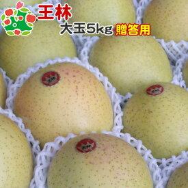 りんご 王林 特選 大玉 青森県産 ギフト 贈答用 5kg 送料込
