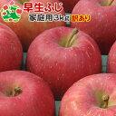【予約受付】 【訳あり】 りんご 早生ふじ 家庭用 キズあり 青森県産 3kg 送料無料
