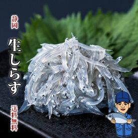 生しらす100g12袋 軽減税率対象商品 静岡駿河湾由比 送料無料