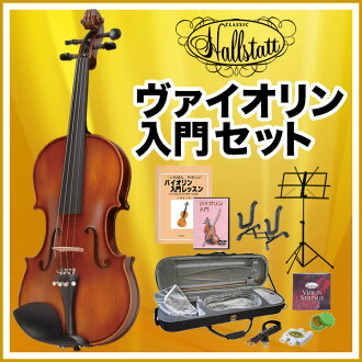 Violin Hallstatt ( Hallstatt ) v-22 beginner beginners set 11 points