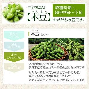 このだだちゃ豆は本豆(8月中〜下旬お届け)です