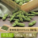 寺田村産だだちゃ豆〔極味〕【早生豆】