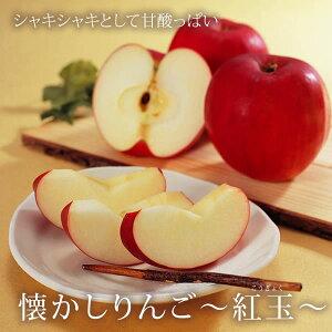 懐かしりんご 紅玉 10〜12玉 ( 山形県産地直送 りんご 東根産 昔ながらの甘酸っぱいリンゴ )