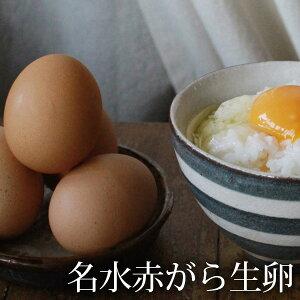 名水赤がら生卵 【純国産鶏「もみじ」 たまご お取り寄せグルメ】