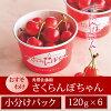Cherry Braised Nya I Su's SATO Jin 120 g x 6 Cup