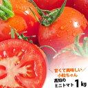 【送料無料】 プチトマト約1kg高知のミニトマト沖縄県と離島は配送不可!北海道へお届けの商品は1個あたり380円の送料…