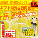 小夏:約2.5kg♪ ギフト用秀品日向夏・ニューサマーオレンジ!高知産沖縄県と離島は配送不可!北海道へお届けの商品は…