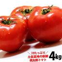 トマト 送料無料 桃太郎 とまと 約4kg 高知愛媛産 トマト とまと沖縄県と北海道と離島は配送不可!
