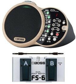 【ポイント2倍】【送料無料】ボス BOSS DR-01S(フットスイッチ/FS-6+audio-technica製接続ケーブル付) Rhythm Partner リズム・パートナー【smtb-TK】