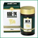 GBE-24(イチョウ葉エキス40mg)720粒【HLS_DU】【05P08Feb15】
