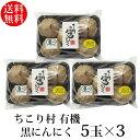 発酵黒にんにく ちこり村 有機 5玉入×3パック(約3か月分)