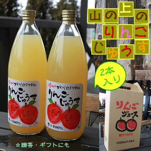 山の上の りんごジュース ストレート 1,000ml×2本 / 送料無料 リンゴジュース アップルジュース 観光地応援 南信州 松川 宮沢農園 お取り寄せグルメ 常温
