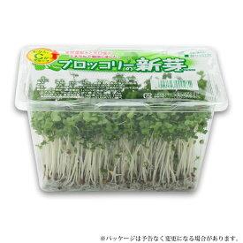 ブロッコリースプラウト ブロッコリーの新芽 12パック入 発芽野菜 で栄養補給!