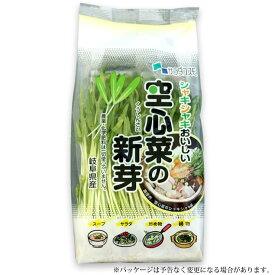 空心菜 の 新芽 スプラウト 6パック入