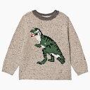 20AW bonpoint ボンポワン キッズ 男の子 女の子 恐竜 ティラノサウルス セーター 恐竜セーター 恐竜洋服