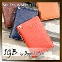 Igb 1300 1