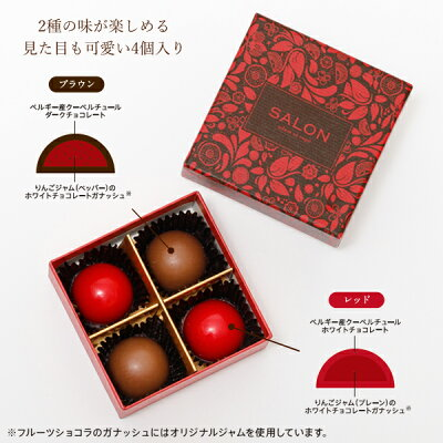 【SALONFRUITSPROJECT】SALONadametrope'オリジナルフルーツショコラ(アップル4個入)