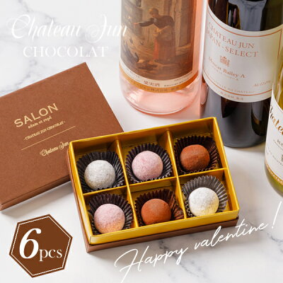 【G20大阪サミット晩餐会提供国産ワイン使用】【ワインを閉じ込めた芳醇なトリュフショコラ】-ChateauJun-シャトージュンワイントリュフショコラ(赤・白・ロゼ6個入アソート)【バレンタインに】