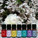 サリービューティズム メール便送料無料【Saly Beautism】100%オーガニック 鈴木サリー パフュームオイル《香水》 「captivate perfume」