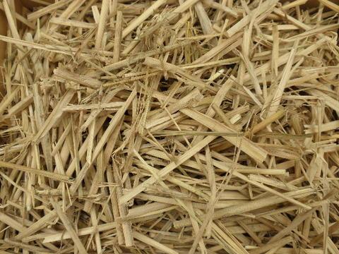 稲わら 藁 国産 カット済 10kg商品番号 Z-006わら ワラ ガーデニング 肥料 カツオ たたき