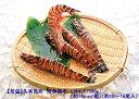 (3311)常 沖縄県・久米島産活車海老ギフト【300g】≪※1)産直商品のため、同梱不可です。※2)お届けまで14日以内。【楽ギフ_のし】【smtb-ms】≫≪お歳暮・冬ギフト≫