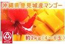 (3106)蔵≪濃厚な味と香りが魅力です☆≫【沖縄県・豊見城産マンゴー<4〜6玉/約2kg>】(送料込)※1)他商品との同梱不可※2)発送開始日からお届けまで最...